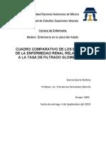 CUADRO COMPARATIVO DE LOS ESTADIOS DE LA ENFERMEDAD RENAL RELACIONADO A LA TASA DE FILTRADO GLOMERULAR
