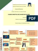 CUADRO SINOPTICO DE CANCER DE PULMON
