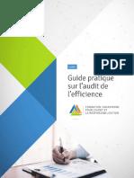 Guide Daudit Sur l'Efficience