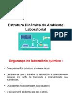 Slides Estrutura Dinâmica Do Ambiente Laboratorial