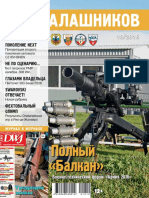 Kalashnikov 2016 10