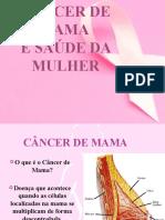 cancer-de-mama-palestra-para-comunidade