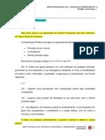 APOSTILA KLIN - Direito Processual Civil - Processo do Conhecimento