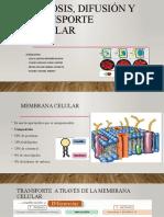 Osmosis, Difusión y Transporte Celular Corregido