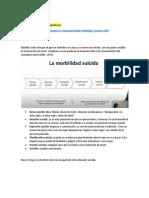 Ideación y Conducta Suicida - Técnicas y Claves Para La Intervención