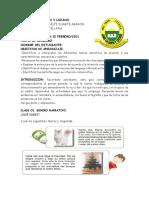 GUIA CASTELLANO 2021- PRIMER PERIODO -GRADO 5º
