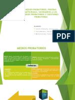 Medios Probatorios, Pruebas Anticipadas, 05