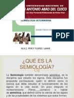 Semiologia Nuevo