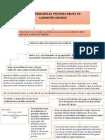 DETERMINACIÓN DE pROTEINAAS EN ALIMENTOS SÓLIDOS mapa 5