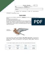 Guía Ciencias 11 Las Aves