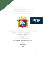 FITORREMEDIACION EN AGUAS CONTAMINADAS POR METALES PESADOS - UNA REVISION BIBLIOGRAFICA BORRADOR