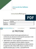 3) proteine_2