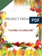 PROIECT_ALA_SAMBA_FLORILOR
