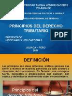 PRINCIPIOS TRIBUTARIOS_HEYDE