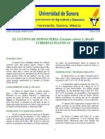 7. EL CULTIVO DE PEPINO PERSA (Cucumis sativus L.) BAJO CUBIERTAS PLASTICAS