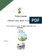 PRIMAVARA ,Grupa mica 2020-2021