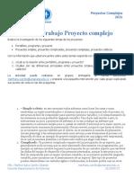 Hoja de Trabajo Programa, Portafolio, Proyecto, Simple, Complejo y Caótico