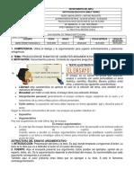 1 GUIA CICLO V 2 PERIODO PDF