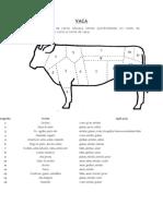Anatomia Das Pecas Carnes