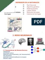 C6 REDES NEURONALES(1)