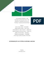 Relatório de Fisologia do Exercício 3 - DETERMINAÇÃO DA POTÊNCIA AERÓBICA MÁXIMA