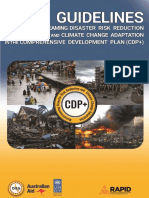 Cdp+ Guidelines