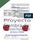 EJEMPLO MODELO Proyecto de Siembra de Pimenton, Caraotas Negras, Aji Dulce