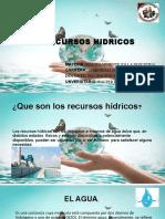 LOS RECURSOS HIDRICOS WALTER DERMIT