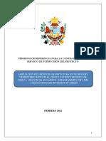 Terminos de Referencia Supervisor Nichos.rev01