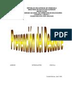 MANEJO DE DESASTRES