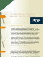 Constitución, Fusiones, Adquisición de Acciones