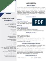 CV - Luis Escorcia.2
