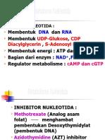 MS K17-18 - Metabolisme Nukleotida