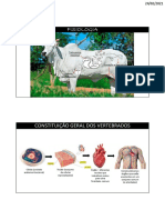 Aula 1 - 1 semestre - PDF