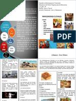 folleto manifestaciones culturales