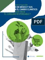 El consumismo en México y sus impactos ambientales; a mayor ingreso monetario mayor impacto