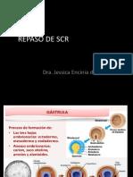 REPASO DE SCR