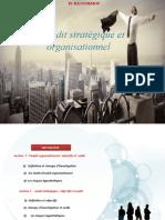 Audit stratégique et organisationnel (1)