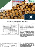 Demografia Brasil