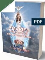 le-rohellec-marie-dispensatrice-des-graces-divines_8810628