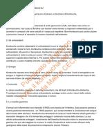 Perch_bisogna_far_uso_del_kombucha.__Propriet_benefiche_di_questo_nostro_alleato