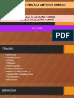 MEHU130_U1_T06_Influenza