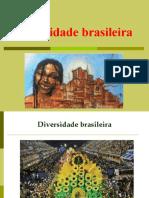 Diversidade Brasileira