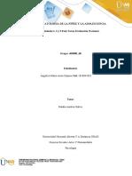 Trabajo colaborativo Post tarea-Evaluación Nacional