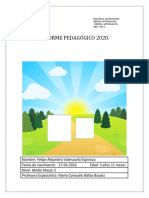 Informe pedagogico 2020 f v