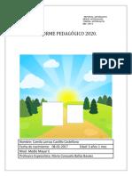 Informe pedagogico 2020 CAMILA CASTILLO SEGUNDO SEMESTRE