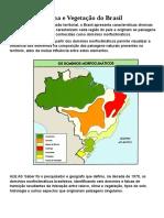 Clima e Vegetação Do Brasil
