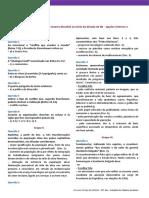 Ficha Global