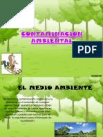 contaminacionambiental-131125071608-phpapp01 (2)
