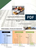 Diagnostico de Farmacias y Boticas Peru 2011